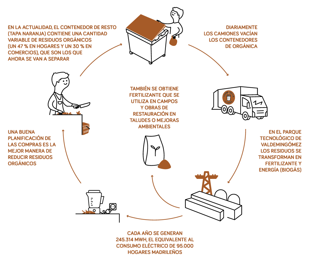ciclo de la orgánica